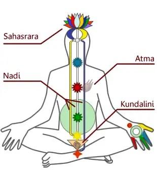 クンダリニーは人間の尾てい骨に眠るエネルギー