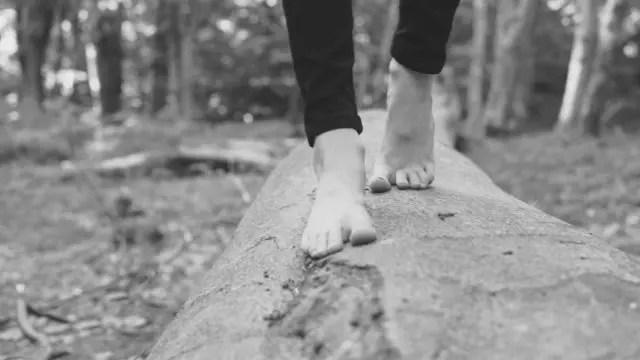 裸足で木の上を歩く