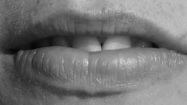 口 唇 歯