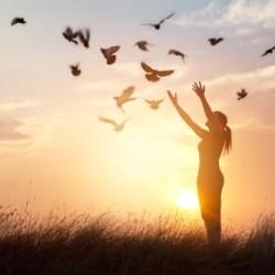 Les potentiels et pouvoirs de l'âme dans son processus d'incarnation