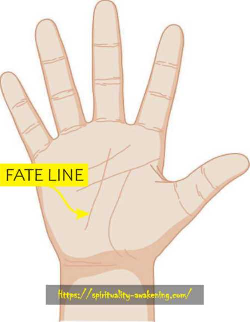 fate line palm reading