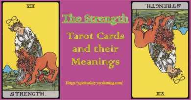 strength tarot card