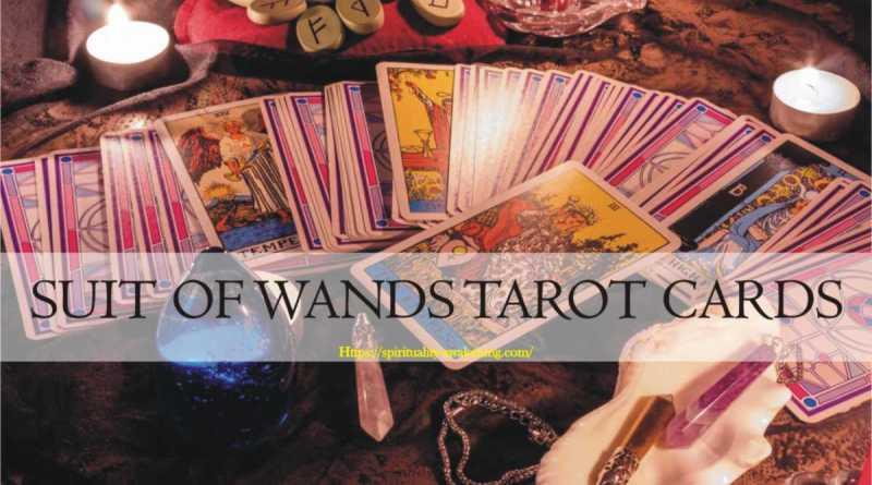 suit of wands tarot card