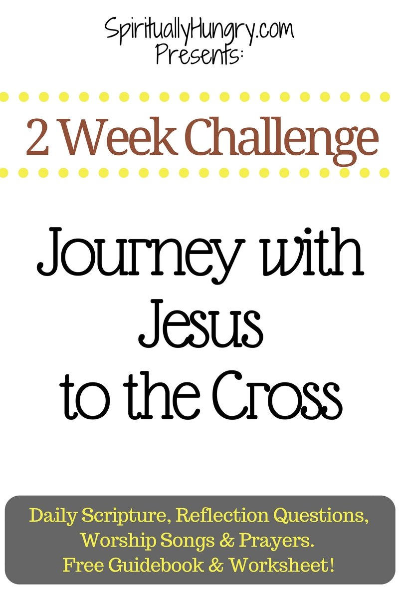 Do you want a deeper appreciation of the sacrifice Jesus made for you on the Cross? We designed this Challenge to help you follow the road He took to the Cross, and praise and revere Jesus for what He's done.