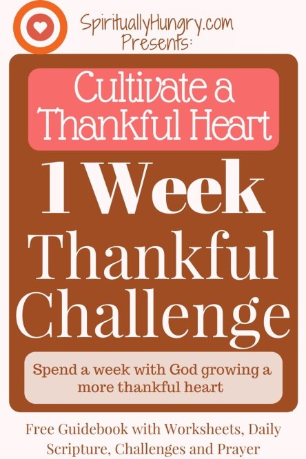 Thankfulness | Thankful For What You Have | Thankful Prayer