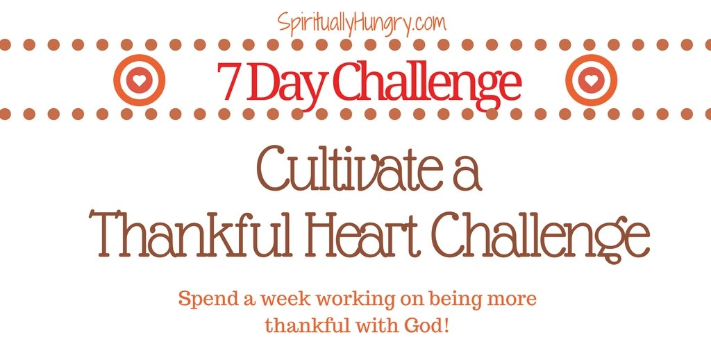 Thankfulness | Being Thankful For What You Have | Prayerful Thanks
