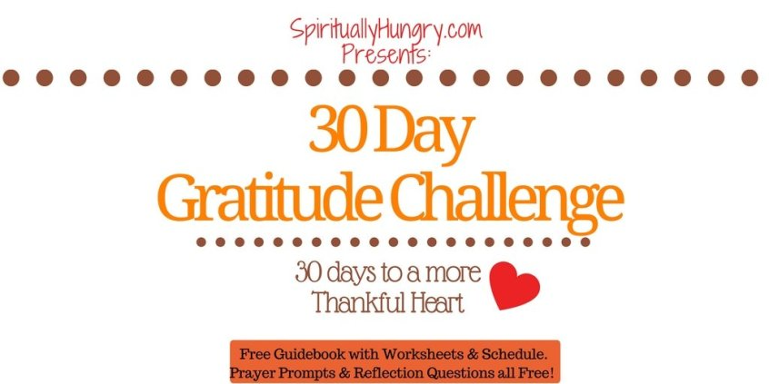 Thankfulness, Thanks, 30 Day Challenge, Thankful, Jesus