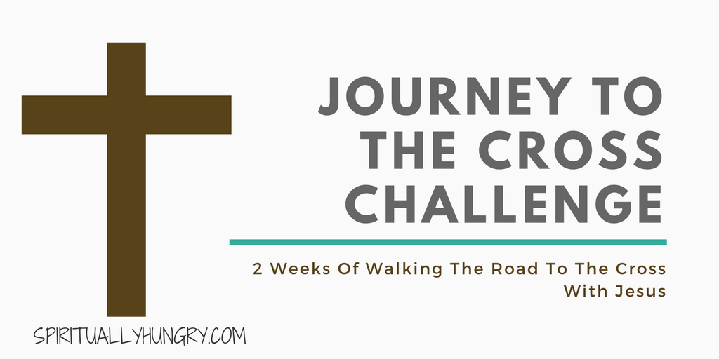 Two Week Journey With Jesus To The Cross Christian Challenge