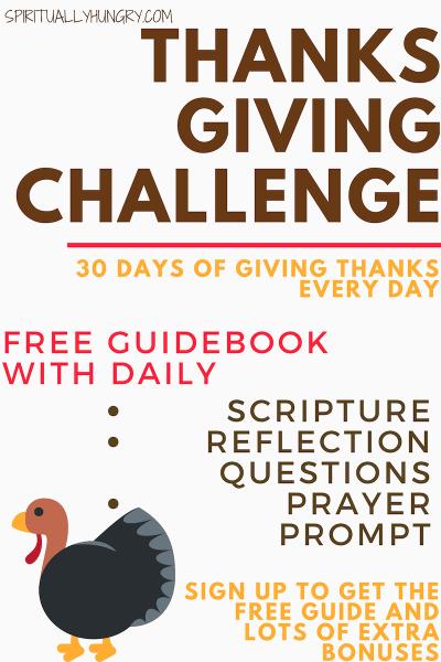 Thanksgiving Challenge