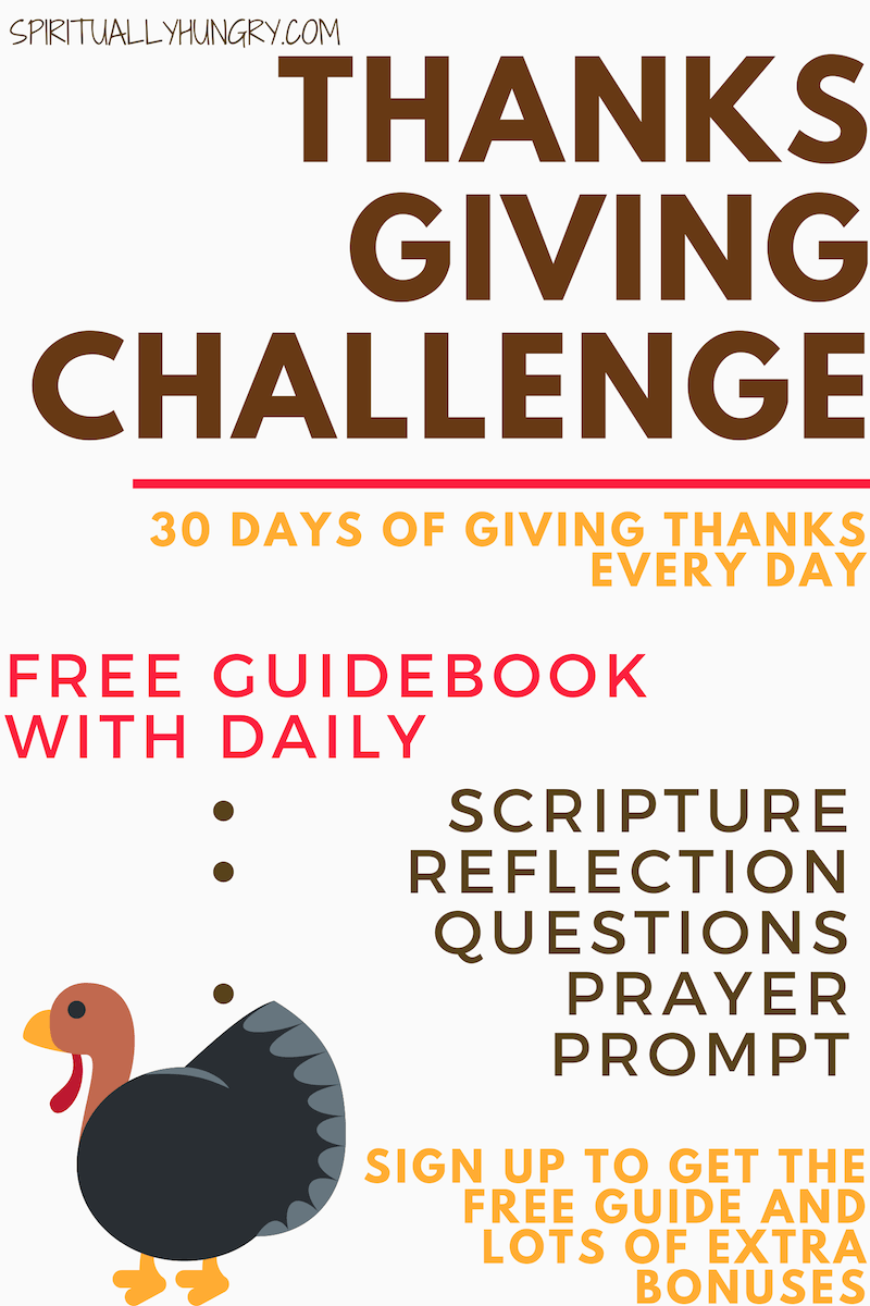 Can you maintain a grateful attitude for EVERY day of November? In this freebie bundle, we're providing you a guidebook with daily Scripture readings, prayers and thankfulness challenges. In addition, a special Thanksgiving family activity, printables included!