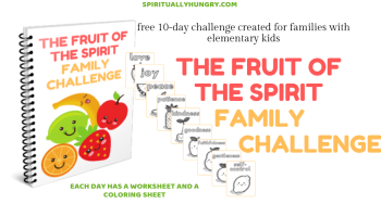 Understanding The Fruit Of The Spirit - Spiritually Hungry