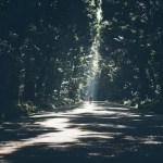 Votre guide spirituel, c'est d'abord vous-même