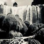 象のように見える滝と呼ばれている