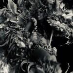 ボイブンバを盛り上げるサンバダンサー