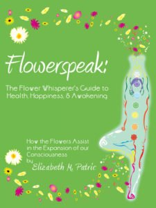 Photo of Flowerspeak Book Cover