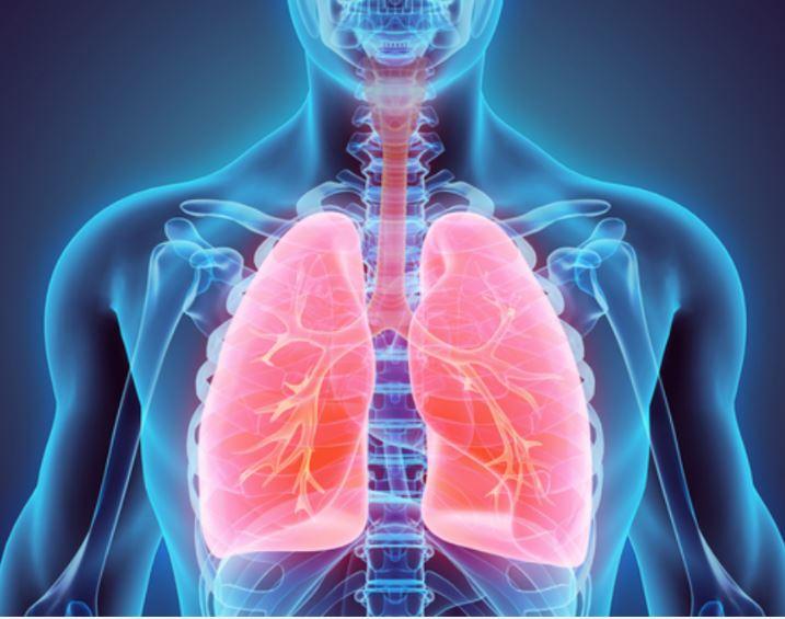 coronavirus lungs 2020