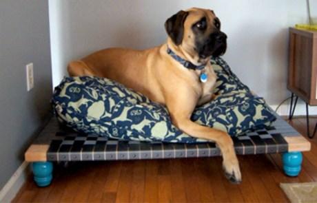 Αν έχετε μεγάλο σκύλο τότε αυτό το κρεβατάκι είναι ό,τι πρέπει