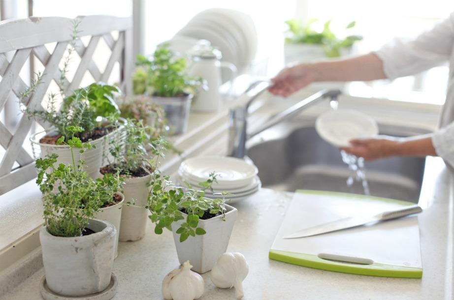 Τα βότανα θα δώσουν όμορφη μυρωδιά στην κουζίνα σας και θα σας χρησιμεύσουν πολύ και στο μαγείρεμα.