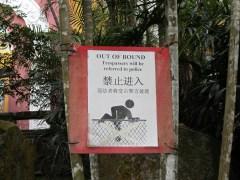 Singlish sign.