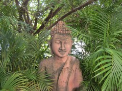 Buddha statue with plants.