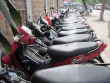 motorbikes everywhere