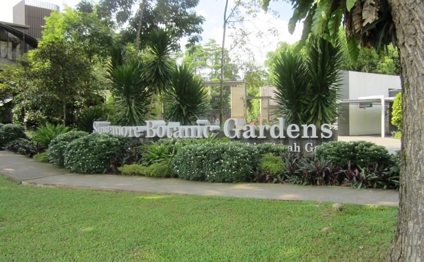 Visit to the Singapore Botanic Gardens