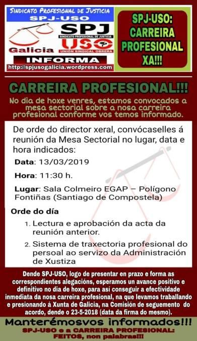 CARREIRA PROFESIONAL