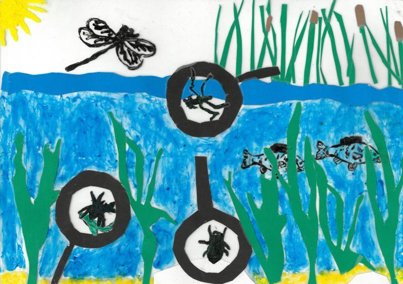 Rysunek bezkręgowców wodnych wykonany przez Justynę Brzosowską z SP w Rutce-Tartak