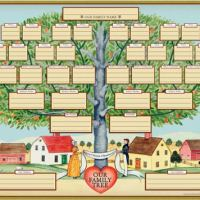 Explore Your Family Tree