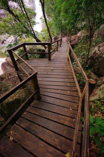 Murray Falls Boardwalk