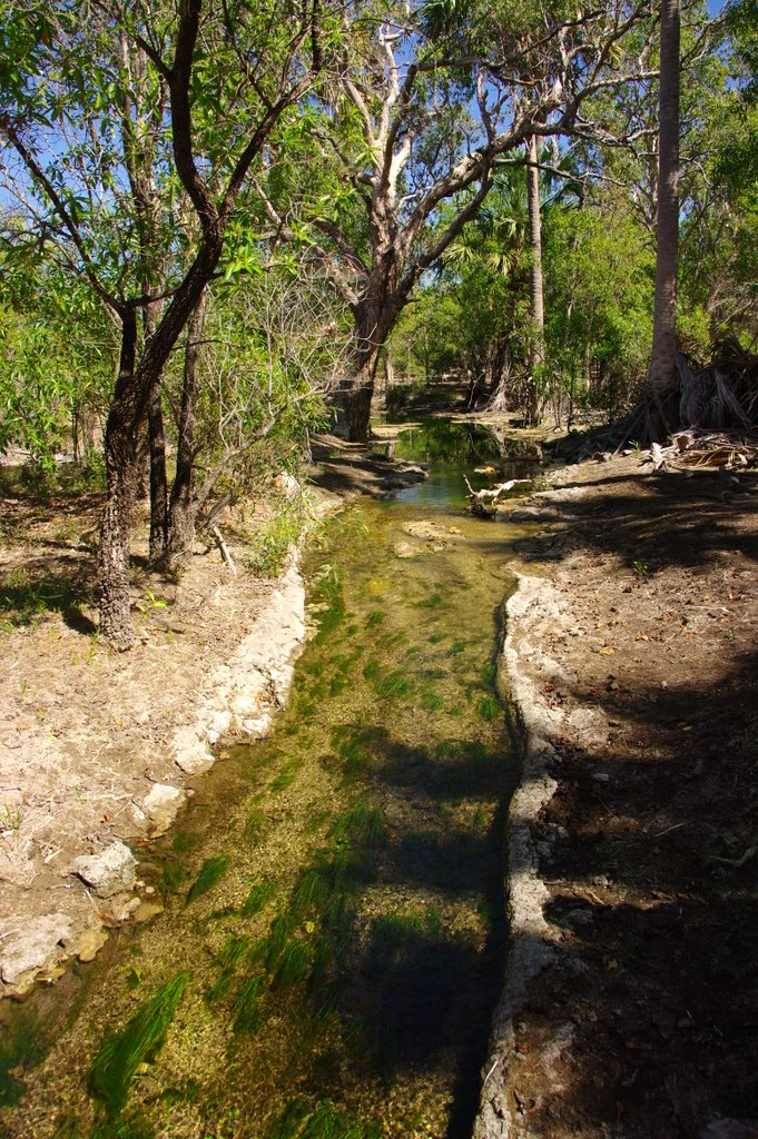 Limestone lined Creek
