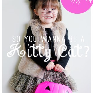 Halloween kitty costume DIY!