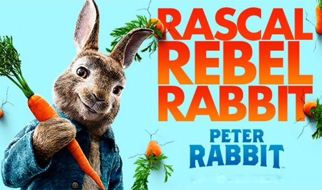 FILM REVIEW: Modern Spin on PETER RABBIT Bounces Into a Good Time