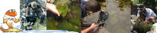 york pond service
