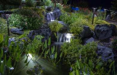 pond lighting how to