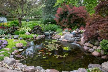 Pond Water Treatments