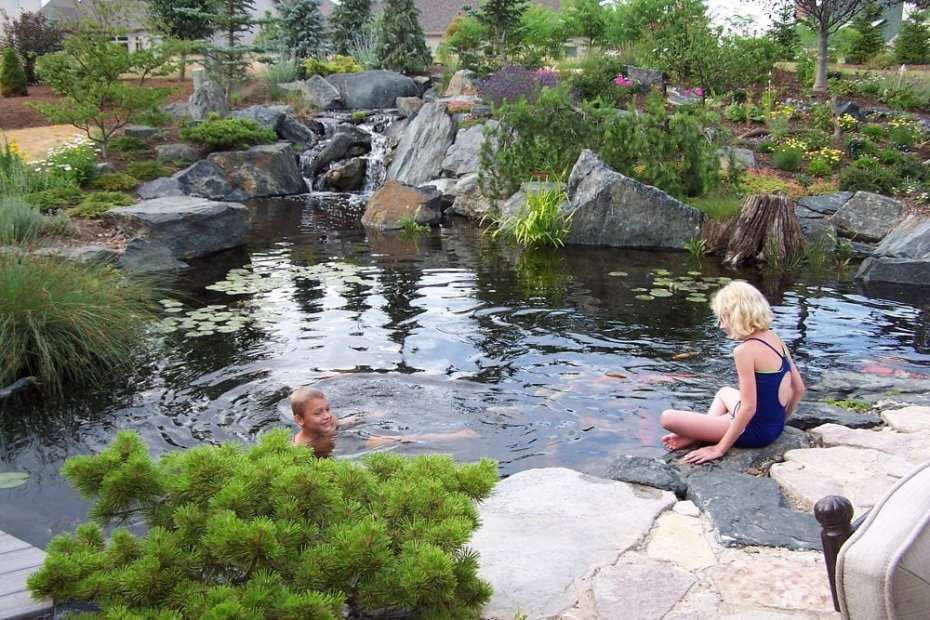 natural swim ponds natural-swimming-ponds-embracing-the-pond-life-ponds-water-features