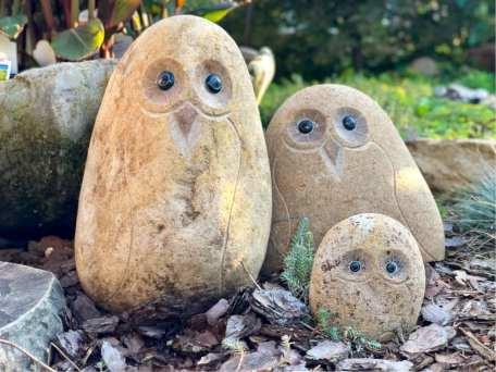 Boulder Owls