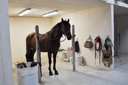 L'Hôtel 4 étoiles des chevaux à Besançon