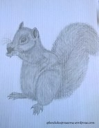 https://splendidexpressions.wordpress.com/2017/05/17/pencil-drawing-of-a-squirrel/