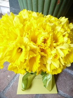 Daffs on the doorstep