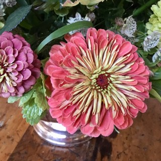 Dusky Zinnias inspire a Big Easy bouquet…
