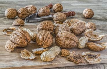 nuts-2971675