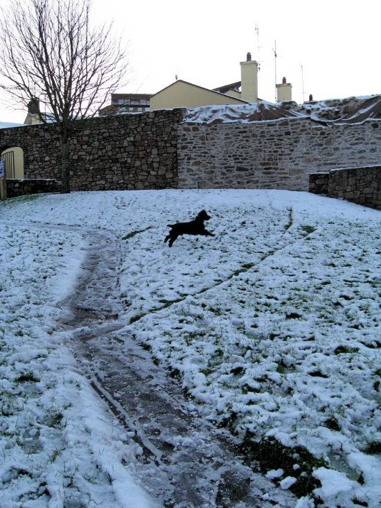 Snow jumping