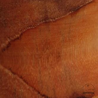 Detail van Jatoba hout