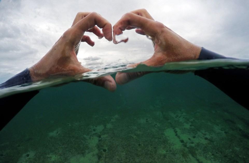 I love the sea over under photo