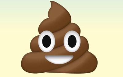The Poop Bandit