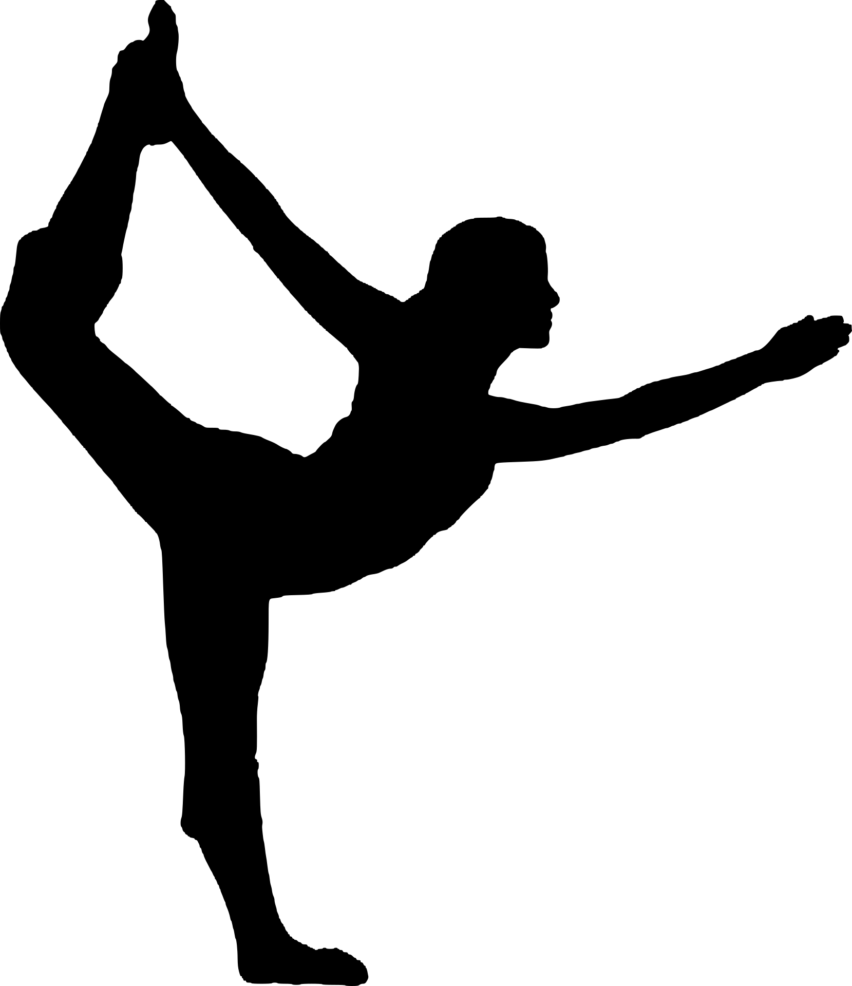 Gymnastic Career at Splitz Gym
