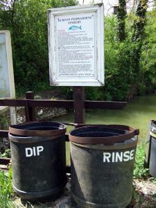Dip and rinse!
