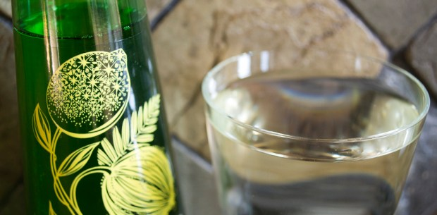 Bottlegreen Lime & Coconut Cordial - Diluted